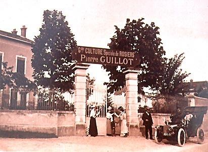 L'histoire de la Roseraie Guillot, roseraie familiale depuis 1829