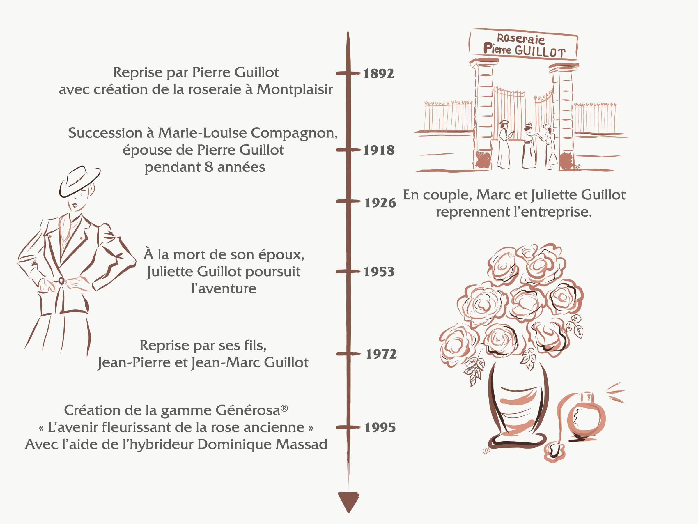 frise chronologique de la Roseraie Guillot® - Roses Anciennes - Roses Guillot®