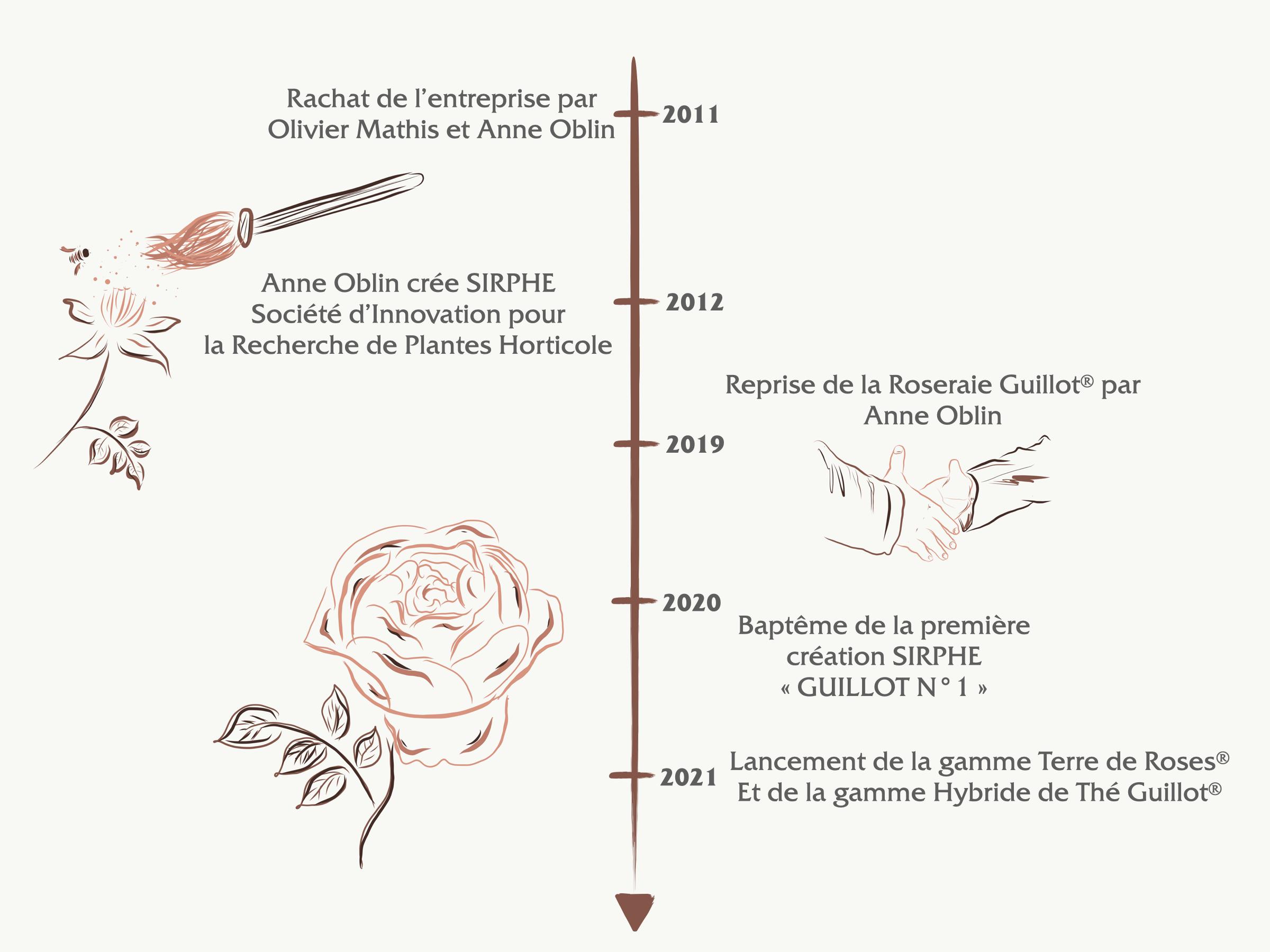 Frise chronologique de la Roseraie Guillot® - Savoir faire, Héritage et Innovation - Roses Guillot®