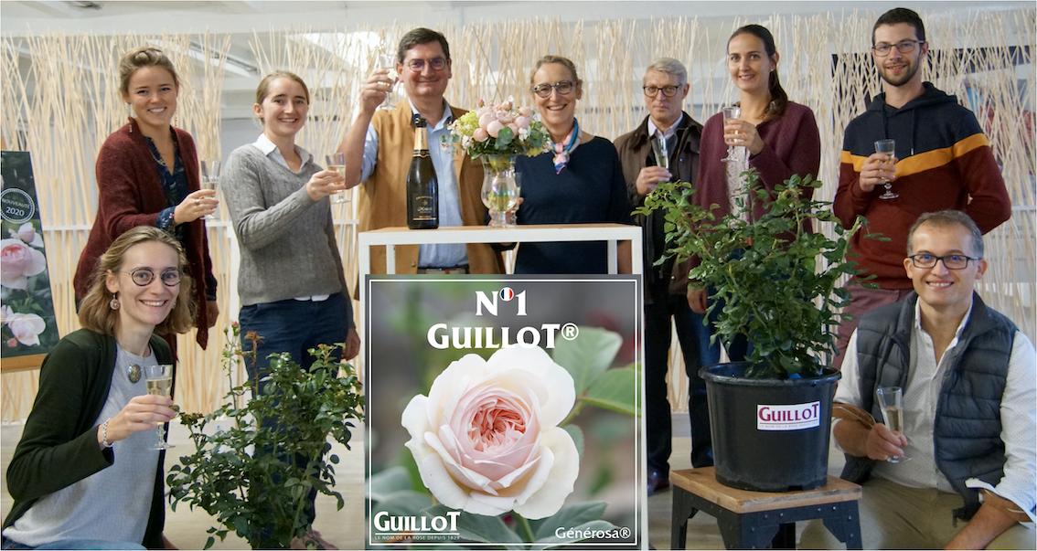 Baptême de Guillot N°1 - Roses Guillot®