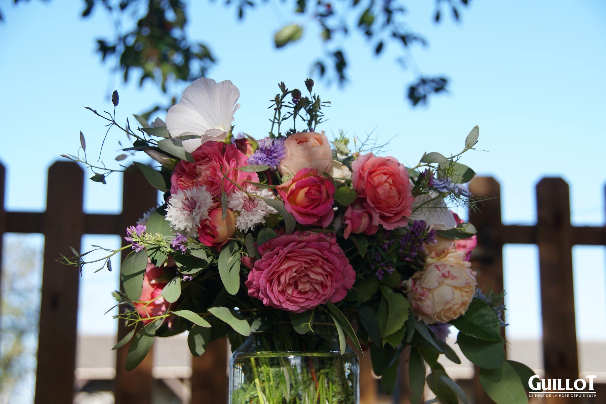 Bouquet de nouveautés 2021 - Roses Guillot®
