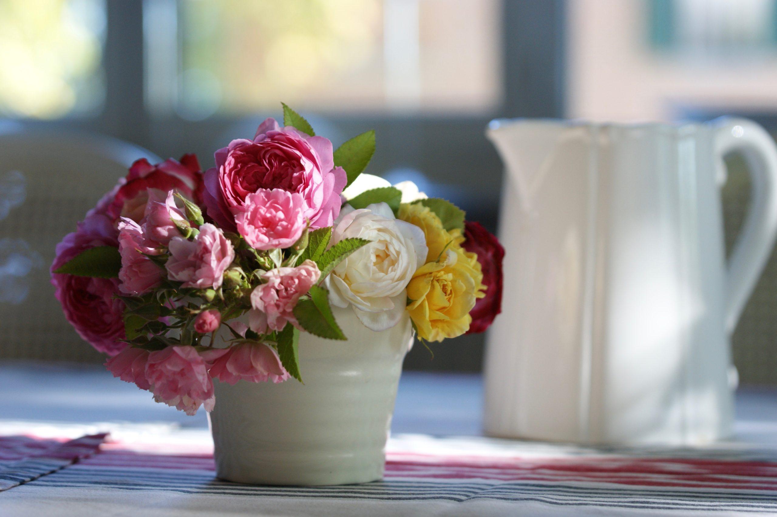 Bouquet de roses du jardin - Roses Guillot®