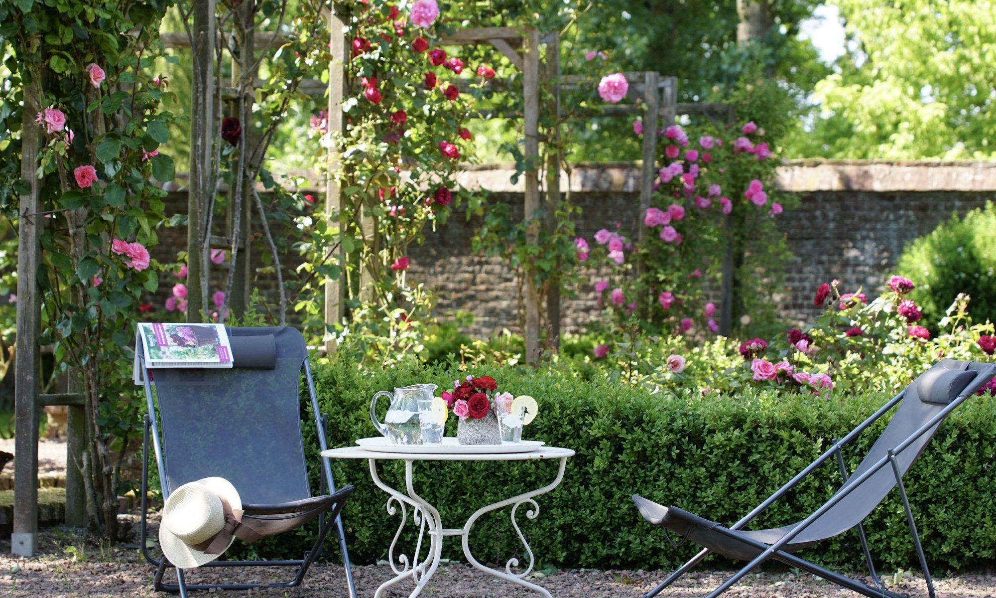 Un jardin fleuri chez ©Roses Guillot®